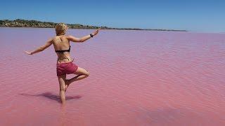 PINK LAKE AUSTRALIA II Worldtrip Vlog #11