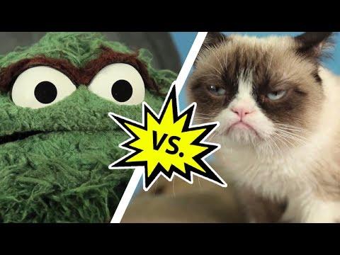 Oscar the Grouch vs. Grumpy Cat | Mashable