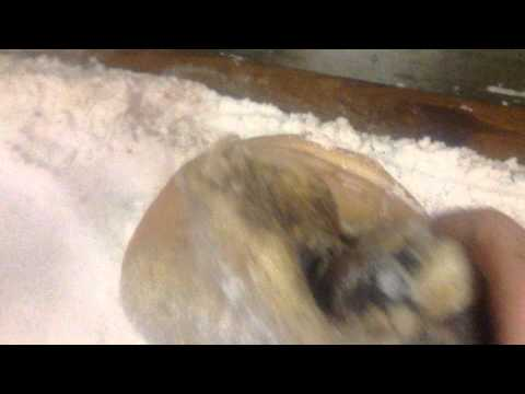 Salt curing hams, part one (curing country ham)