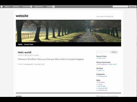 How to replace a background in twenty ten wordpress theme.mov