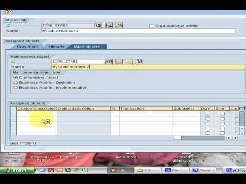SAP ABAP custom IMG structure