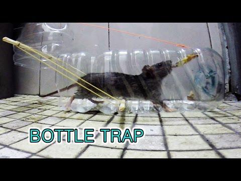 plastic bottle mouse trap (페트병 쥐덫)