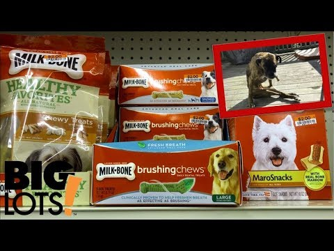 Milk Bone Brushing Chews Review | Freshens Your Dog's Breath!