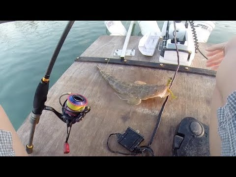 The Search for A Monster Flathead Ep.  2