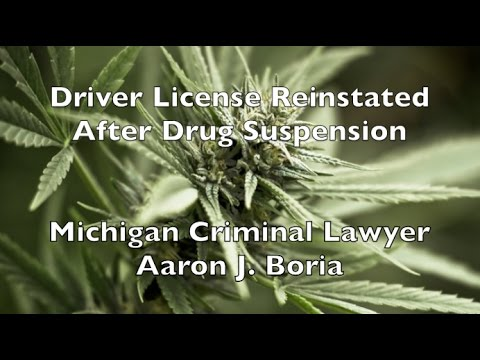 Drivers License Suspended Drug Charges Michigan