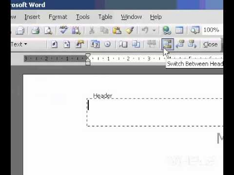 Microsoft Office Word 2003 Format page numbers on view
