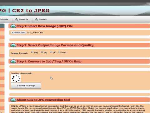 CR2 to JPG Conversion Online