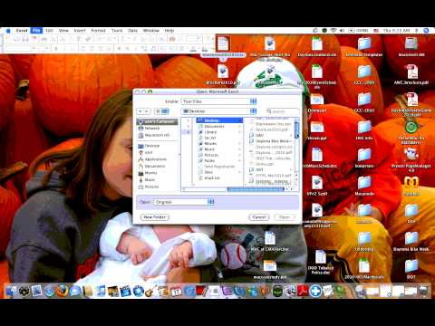 ID Scanner Data Export from Palm Desktop to Excel on Mac