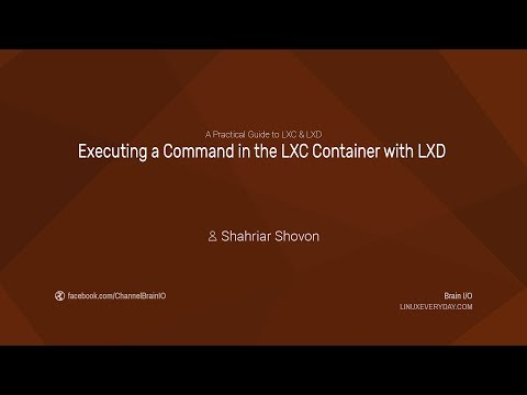 09. Executing a Command in the LXC Container with LXD