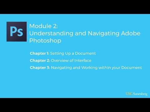 Module 2: Navigating and Understanding Adobe Photoshop