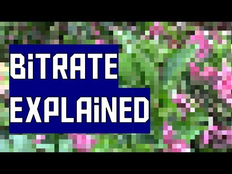 What is video bitrate? (AKIO TV)