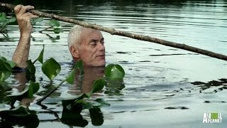 Underwater Nest of Horrors Home to a Killer? | River Monsters