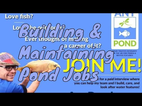 Pond Job Opportunities, Full and Part time Positions, Pond Vacancies