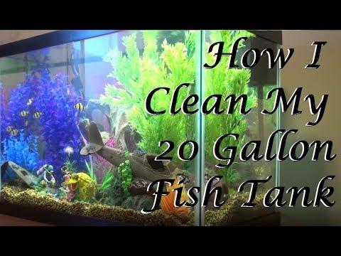 How To Clean the Top Fin 20 Gallon Aquarium