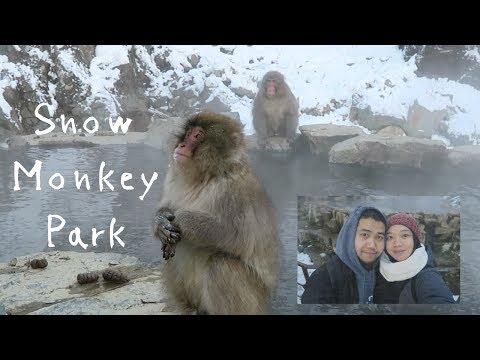 Snow Monkey Park in JAPAN!