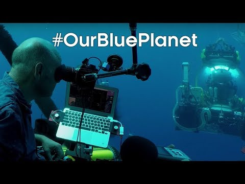 Discovering underwater lake ecosystems for Blue Planet II #OurBluePlanet | BBC Earth