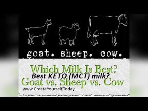 Eat healthy dairy: Cows VS Goats VS Sheeps. Cheese and Milk. Non-dairy Dairy. Best Keto Milk.