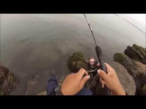 Saltwater: Mackerel Fishing Kastmaster Lure & Ugly Stik GX2