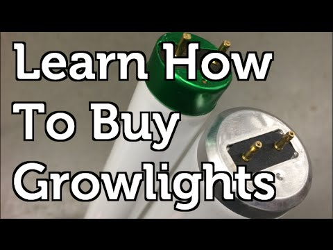 CFL or Flourescent Grow Lights What You Need to Know to Buy and Build the Best Grow Operation