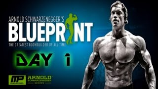 Arnold blueprint videos ytube arnolds blueprint cut day 1 chest and back malvernweather Gallery
