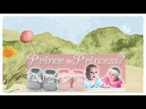 Baby Gender - Selecting the Gender of Your Future Child - Baby Gender