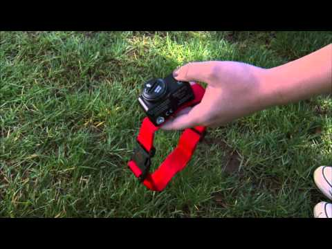 How to Install a PetSafe® Wireless Dog Fence
