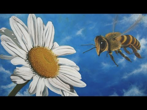 How to paint a Realistic Giant Bee in Satin Series Acrylic Paint