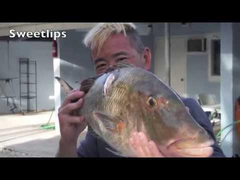 Spearfishing Kiritimati Island / Christmas Island  with Red Sea Ocean Adventures 2015