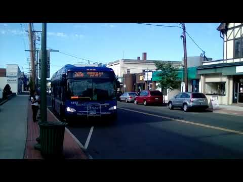 CT Transit New Haven Exclusive Routes 265B and 271