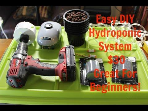 Easy $30 Homemade Deep Water Culture (DWC) Hydroponics System DIY
