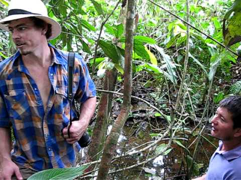 Chevron Texaco Oil Contamination of Amazon Rainforest Water