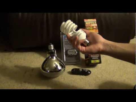 Reptile Care - UVB Lights & Temperature