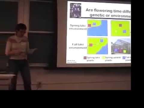 Dr. Veronica Morris Lupinus nanus talk