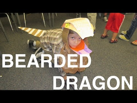 HOW TO MAKE A KID LIZARD COSTUME || BEARDED DRAGON