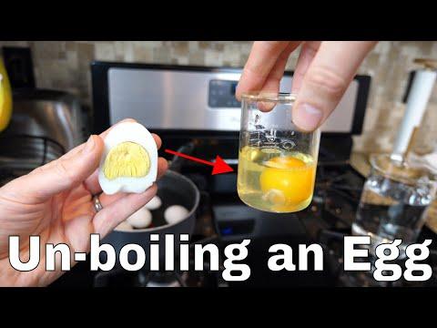 Is it Possible to Unboil an Egg? The Amazing Uncooking Experiment!