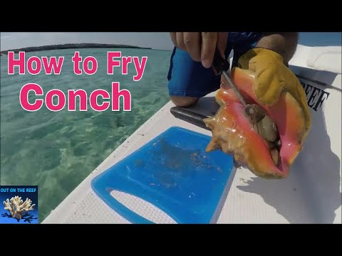 How to Clean and Fried Conch Fritters Solo Survival at Sea Miami to Bimini