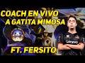 COACHING A GATITA MIMOSA EN VIVO FT FERSITO PLATINO 2 Gatita Mimosa Fer