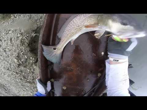Fishing for Redfish in the rain- Charleston SC
