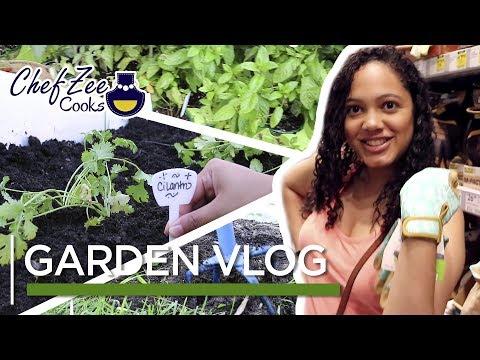 Affordable DIY Garden Vlog | Gardening For Beginners | Made To Order | Chef Zee Cooks