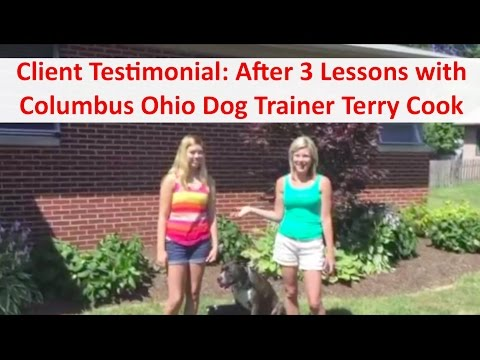Top Columbus Ohio Dog Trainer Terry Cook: Client Testimonial Review: After 3 Dog Training Lessons