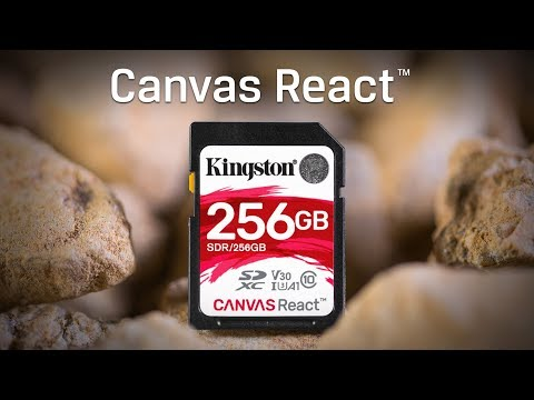 Class 10 UHS-I SD Cards - Canvas React - Kingston Technology