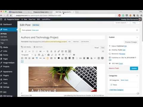Create a beautiful Facebook post display using the Yoast SEO plugin for Wordpress.org