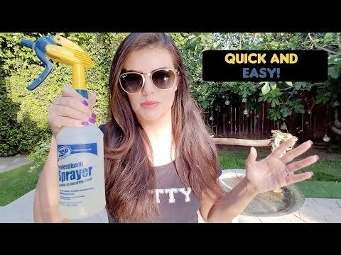 How To Safely Clean Your Bird cages and Parrot Stands| PARRONT TIP TUESDAY