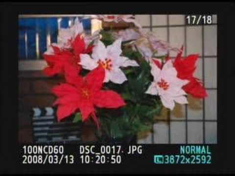 Nikon D60 Demo Review Tips  Tricks