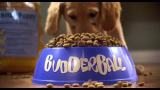 Air Buddies - Trailer