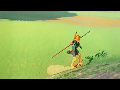 Zelda breath of the wild catching horses and selling to beedle