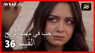 حب في مهب الريح - الحلقة 36