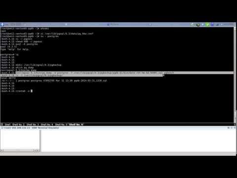 PostgreSQL backup with pg_dump
