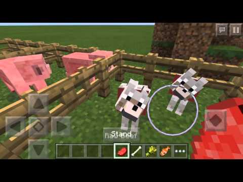How to breed animals Minecraft PE