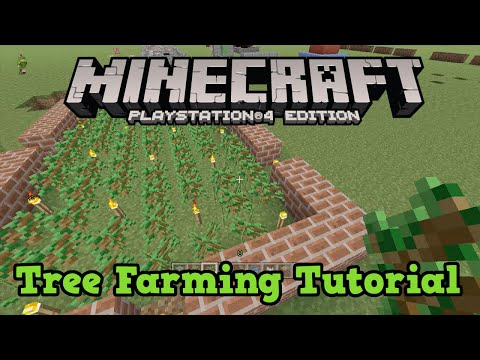 Minecraft PS3 + PS4 + Xbox: Tree Farming Guide (Tutorial 10/10)